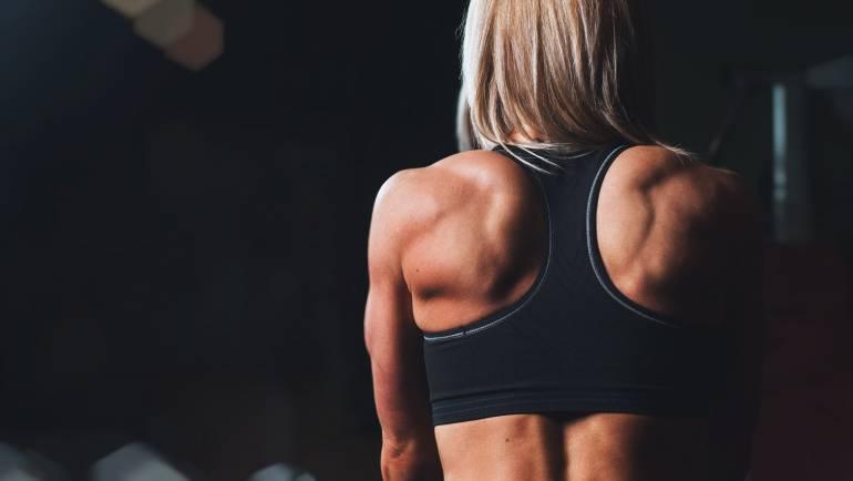 back-body-bodybuilding-28061.jpg